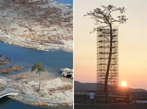 岩手県陸前高田市、左が、2011年3月17日、右が2013年3月11日。