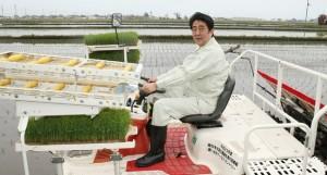 Abe Farming