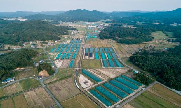 この画像には alt 属性が指定されておらず、ファイル名は 福島第一廃棄物-1.jpg です